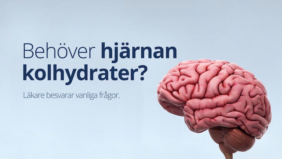 #4 Vanliga frågor – Behöver hjärnan kolhydrater?