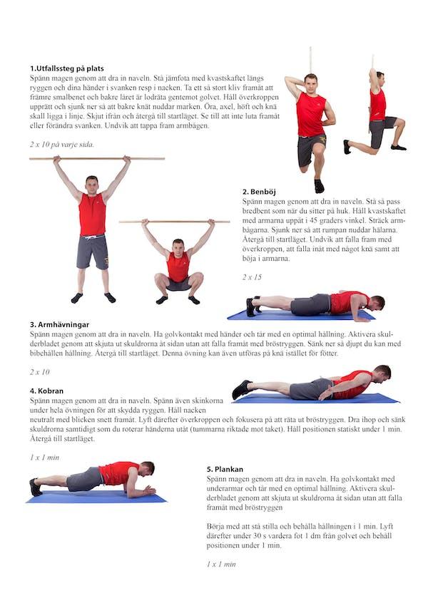 Hemträningsprogram