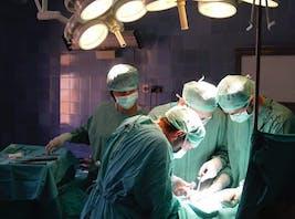 fetmakirurgi