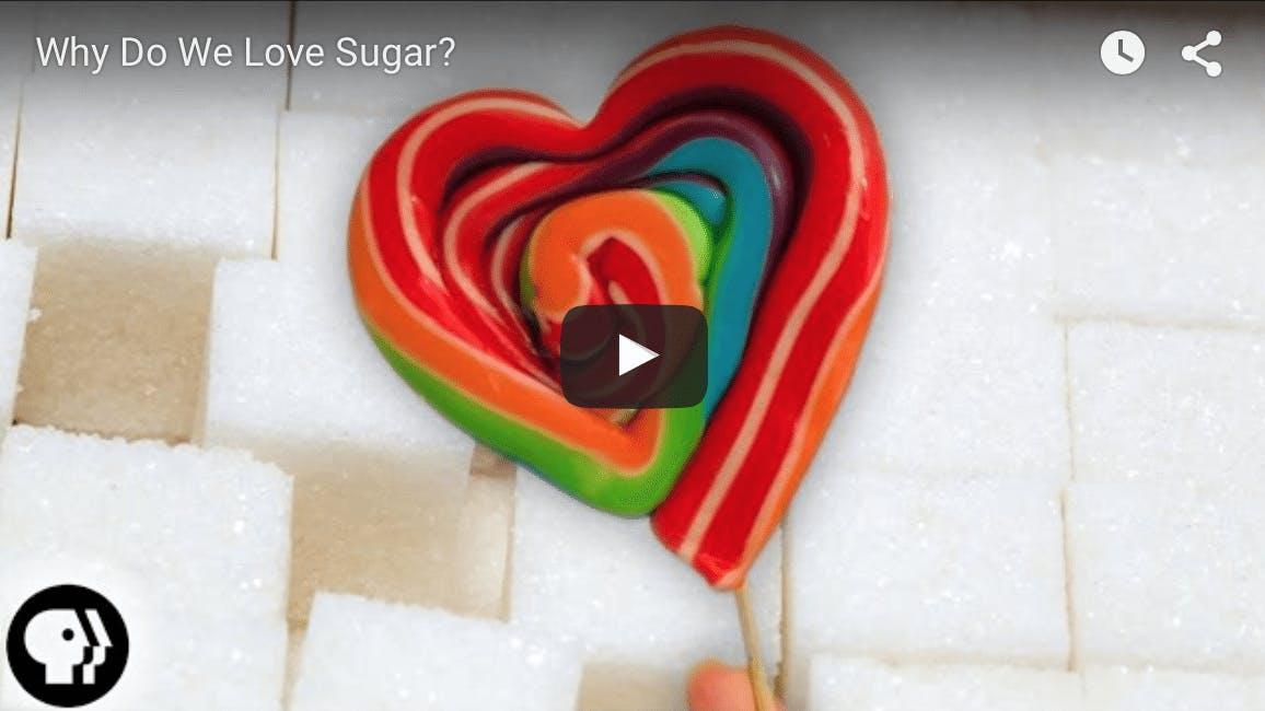 Varför älskar vi socker?