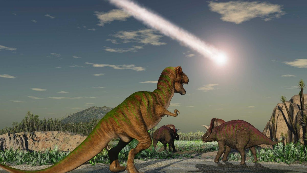 180 dinosaurier kan inte ha fel, eller? –BMJ uppmanas att dra tillbaka kritik av kostråden
