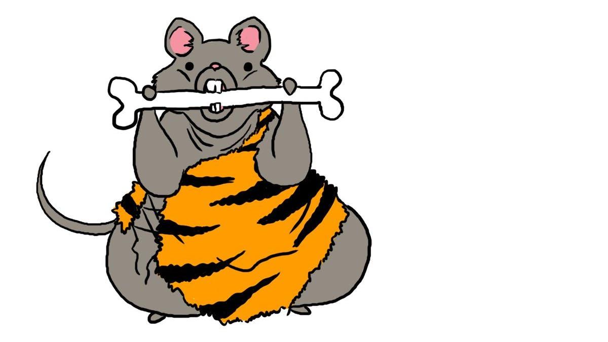 Ny studie påstår att paleokost orsakar diabetes och fetma, för människor som är möss