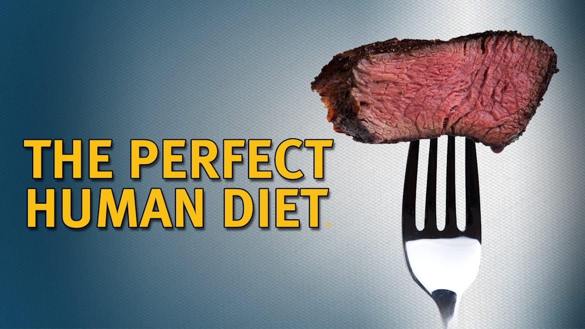 Den perfekta maten för människor