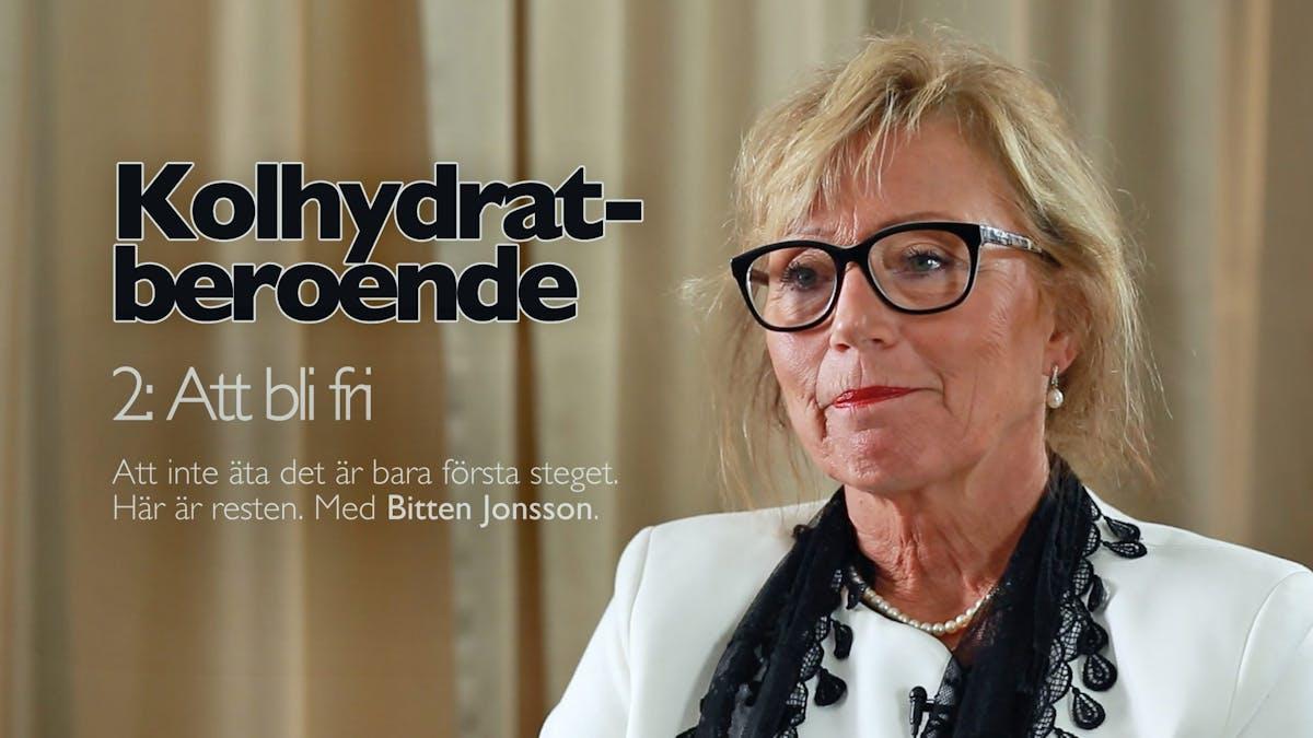 Intervju - Bitten Jonsson (del 2)