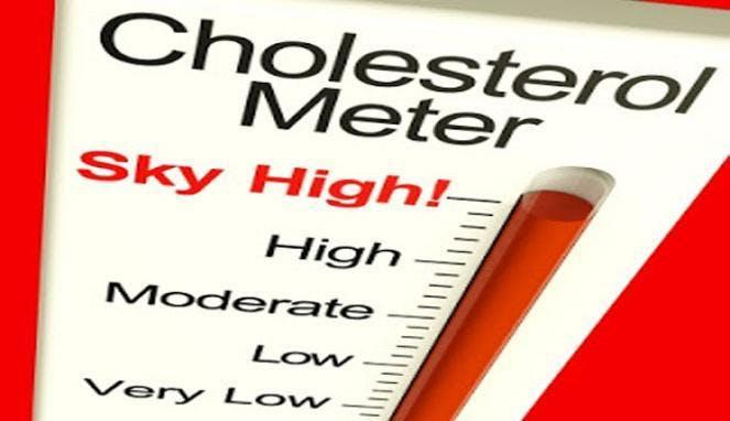 Testa kolesterol hemma