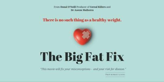 The Big Fat Fix har släppts!
