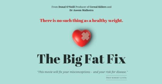 The Big Fat Fix är klar!