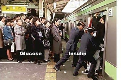 glucins2-400x263