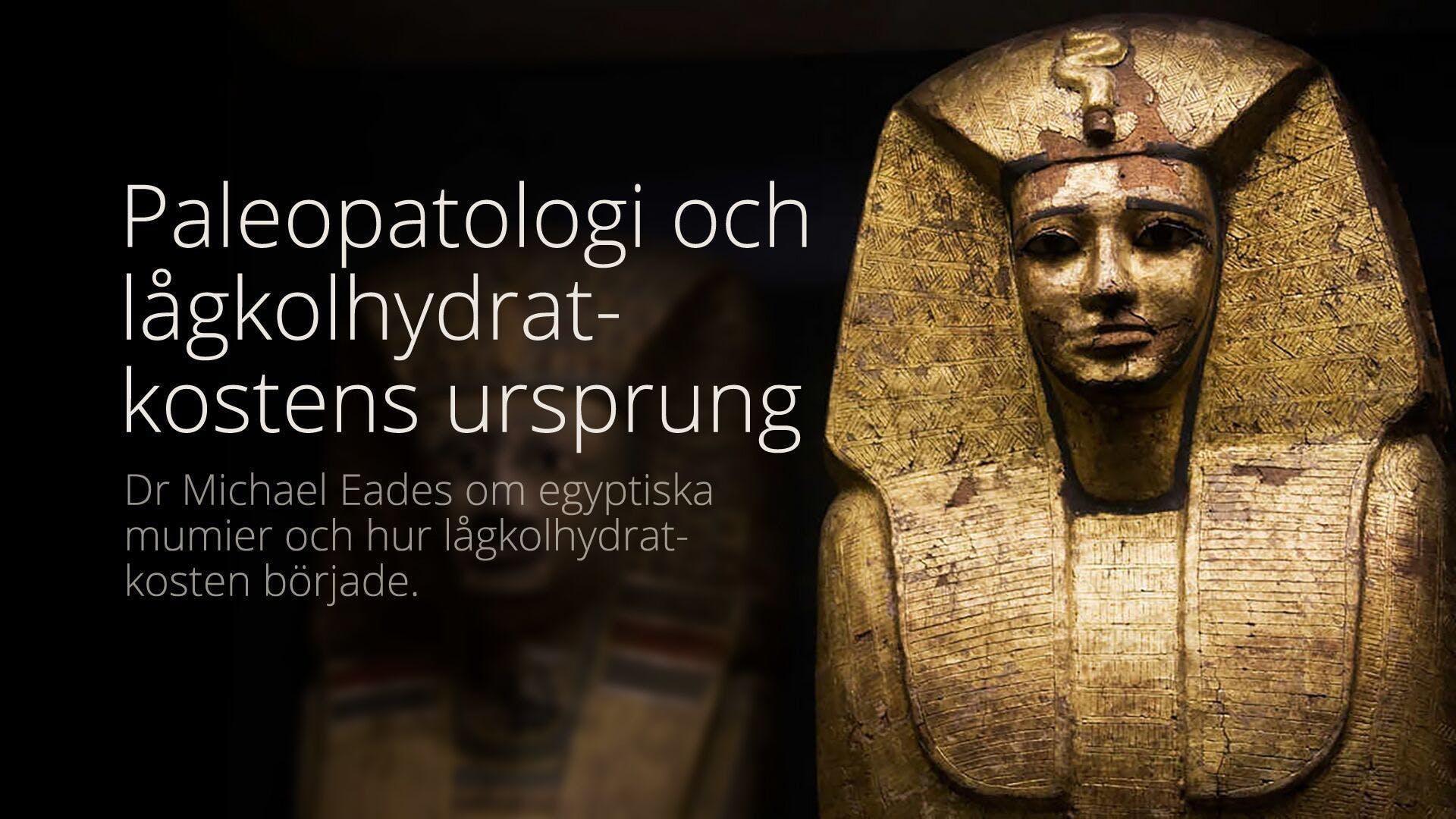 Var de gamla egyptierna friska på sin vetebaserade kost?