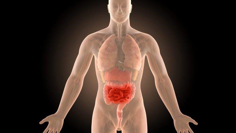 Framgångsrik behandling av Chrons sjukdom med ketogen paleokost