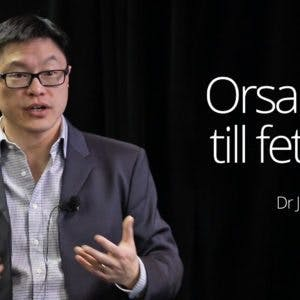 Orsaken till fetma –dr Jason Fung