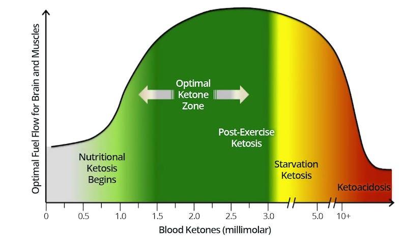 ketonezone2