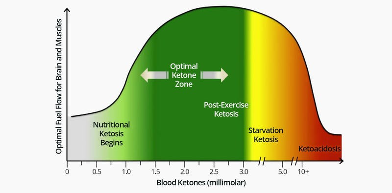 The Ketone Zone