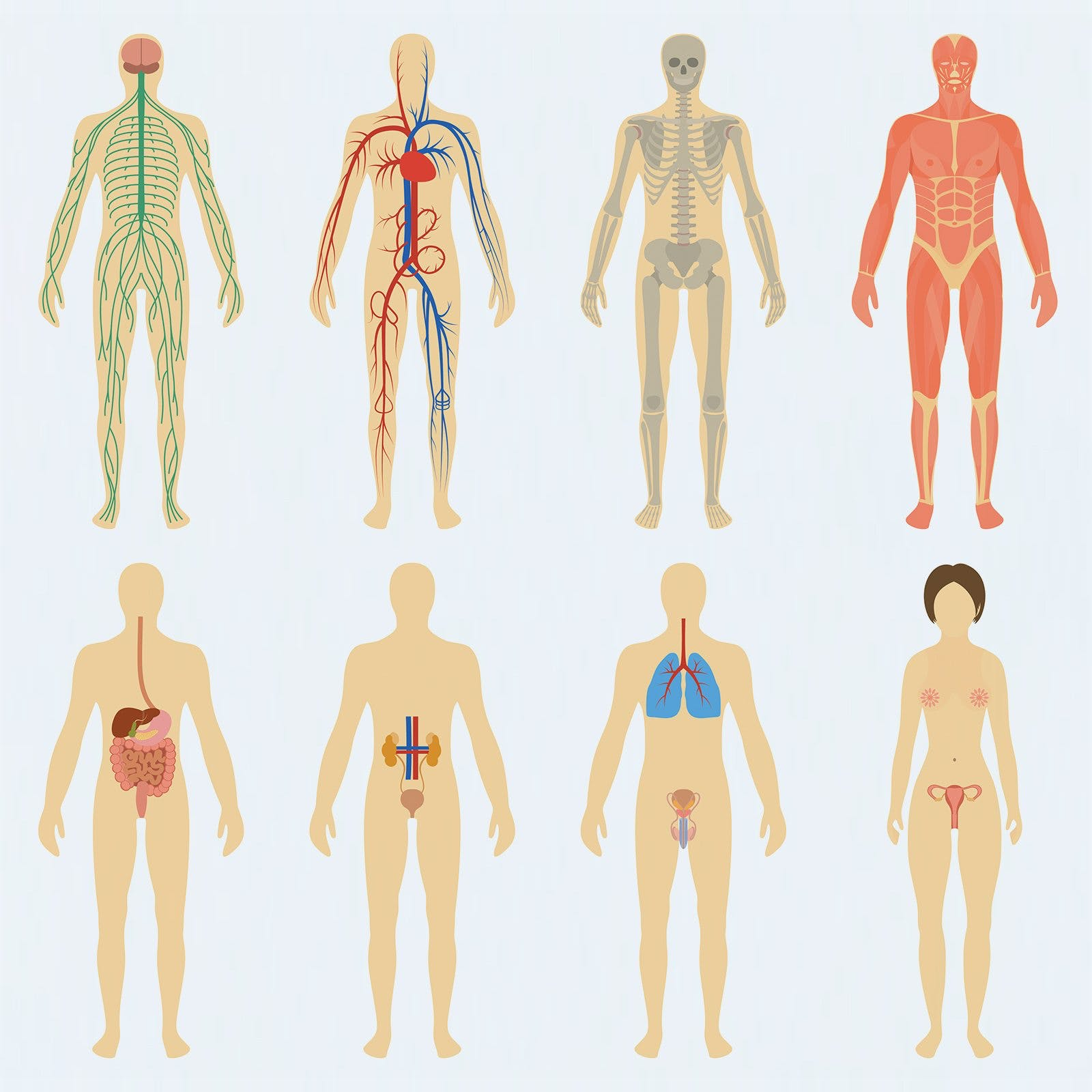 Komplikationer vid diabetes – en sjukdom som påverkar alla organ