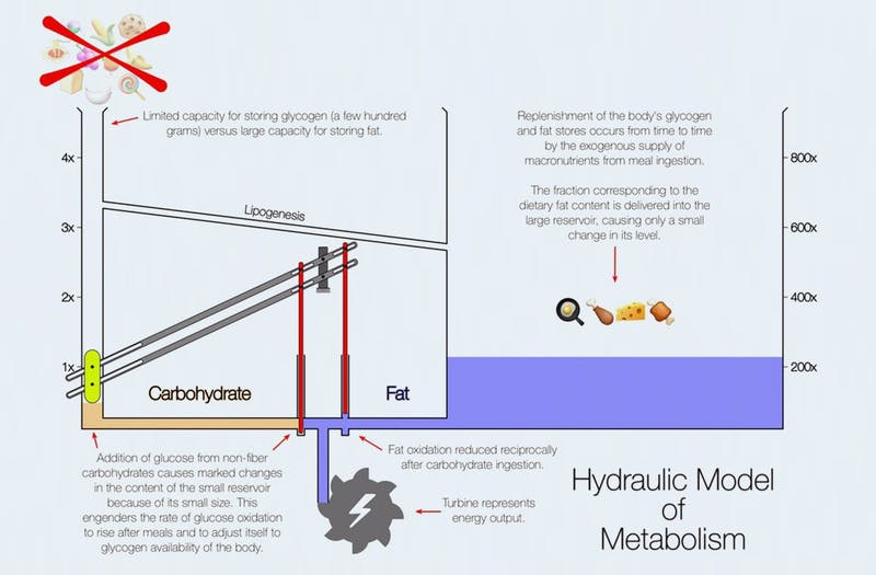 hydrualic1