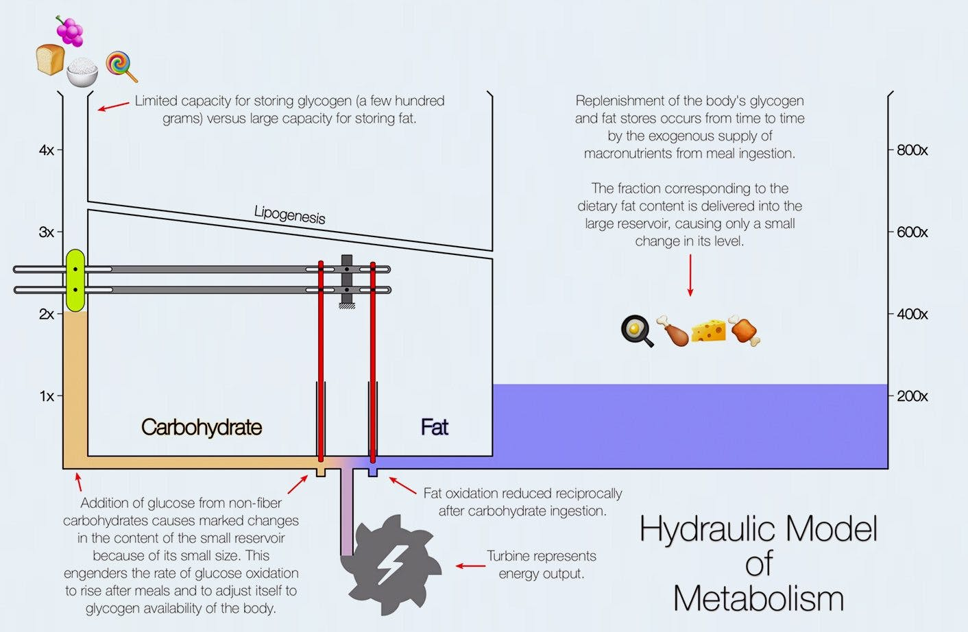 hydrualic2