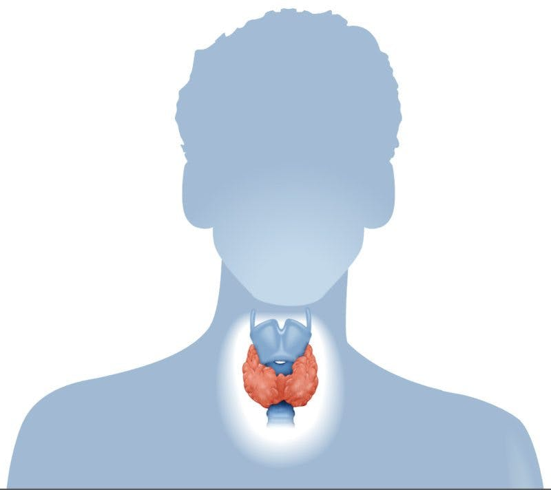 thyroid2