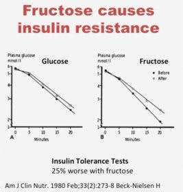 Fructose-insulin-resistance-267×280
