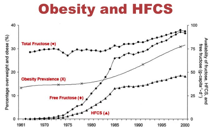 HFCS-obesity