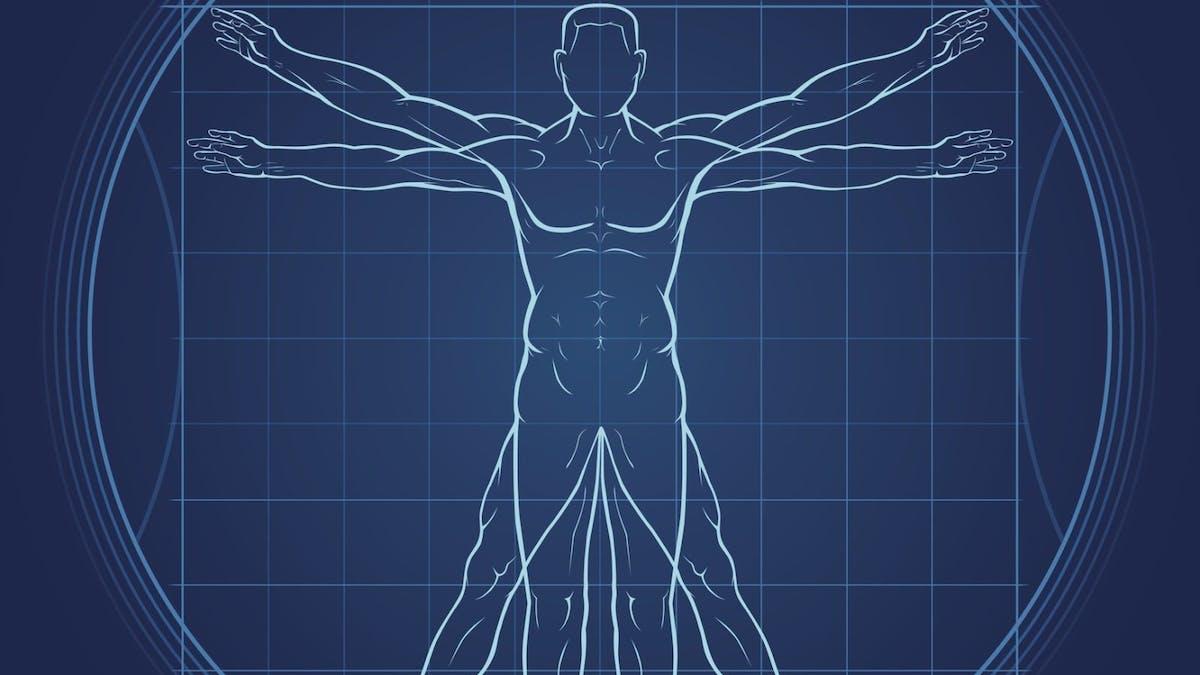 Så påverkar fasta fysiologi och hormoner