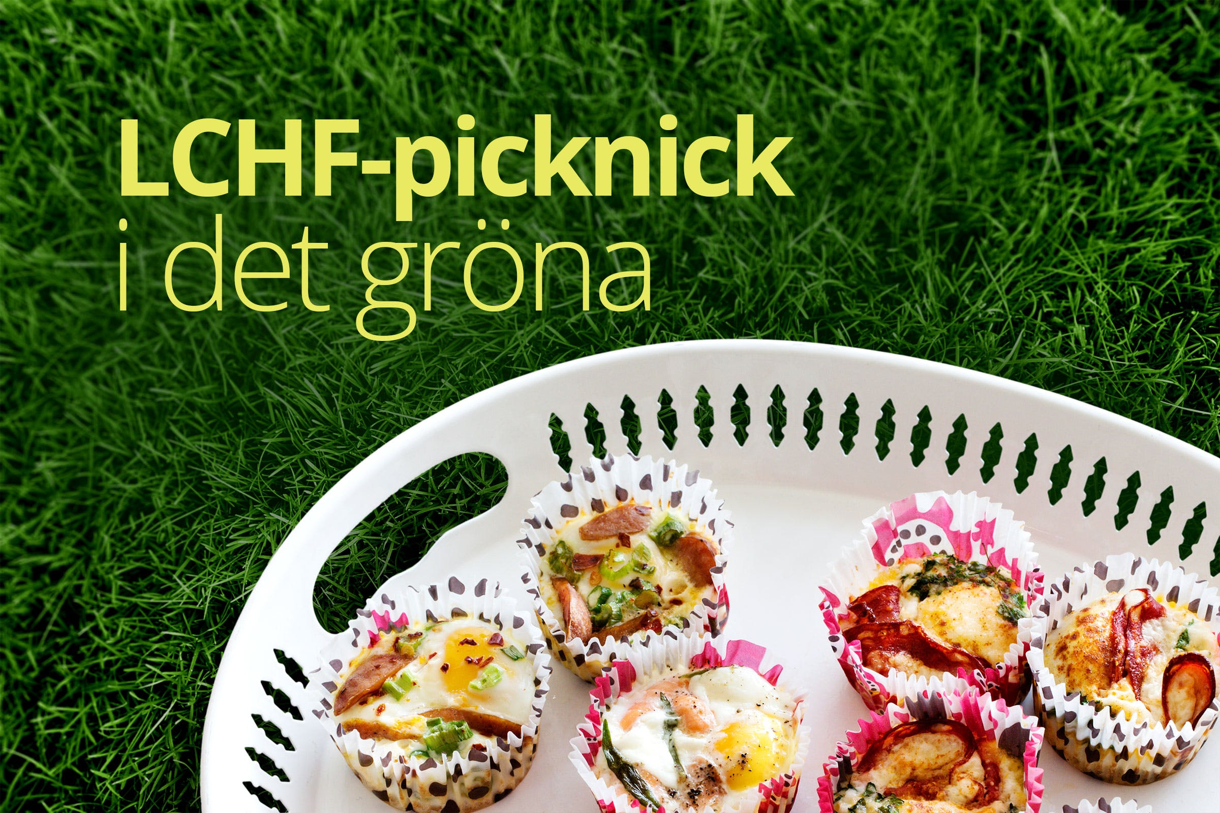 LCHF-picknick i det gröna