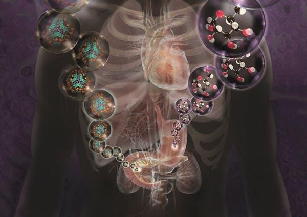 1073268_diabetes-and-heart-disease-spl-17
