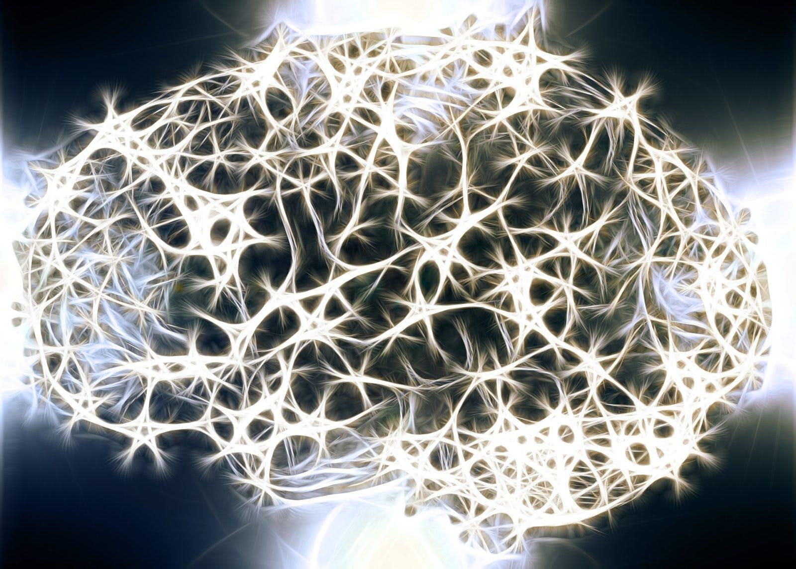 neurons-1739997_1920-1600×1143