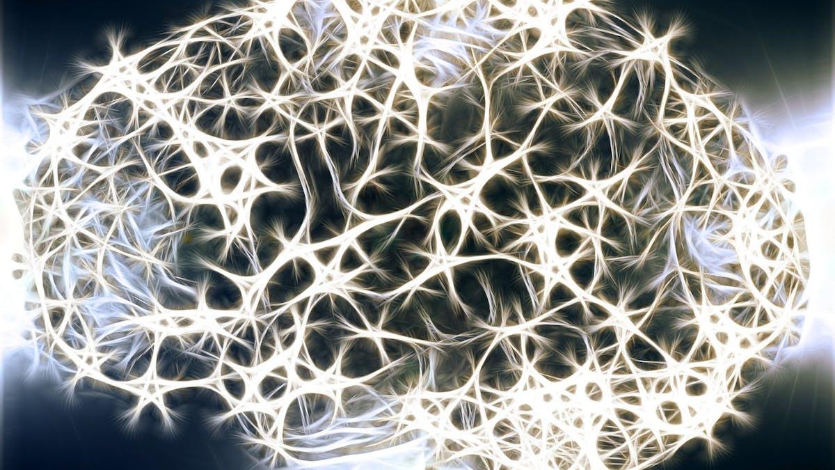 Ny översiktsartikel: Ketogen kost och psykiatriska tillstånd