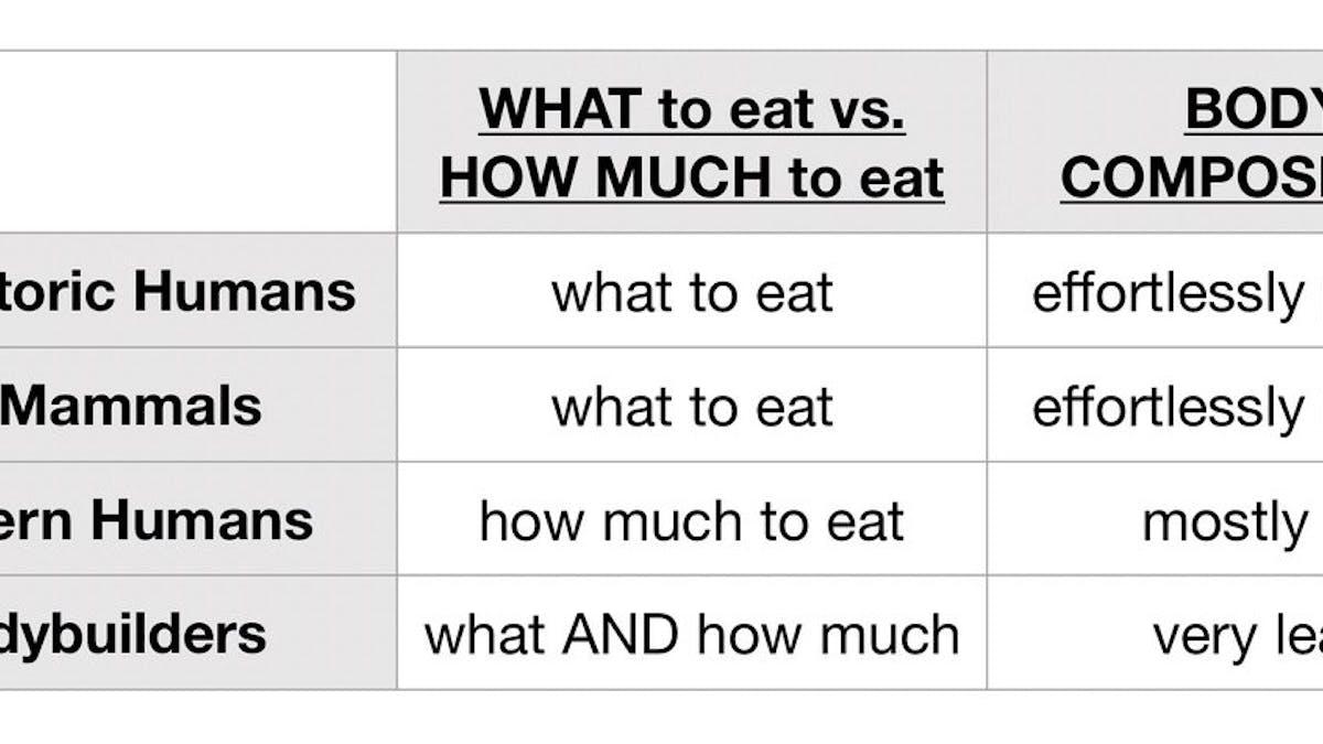 VAD du äter är viktigare än HUR MYCKET du äter