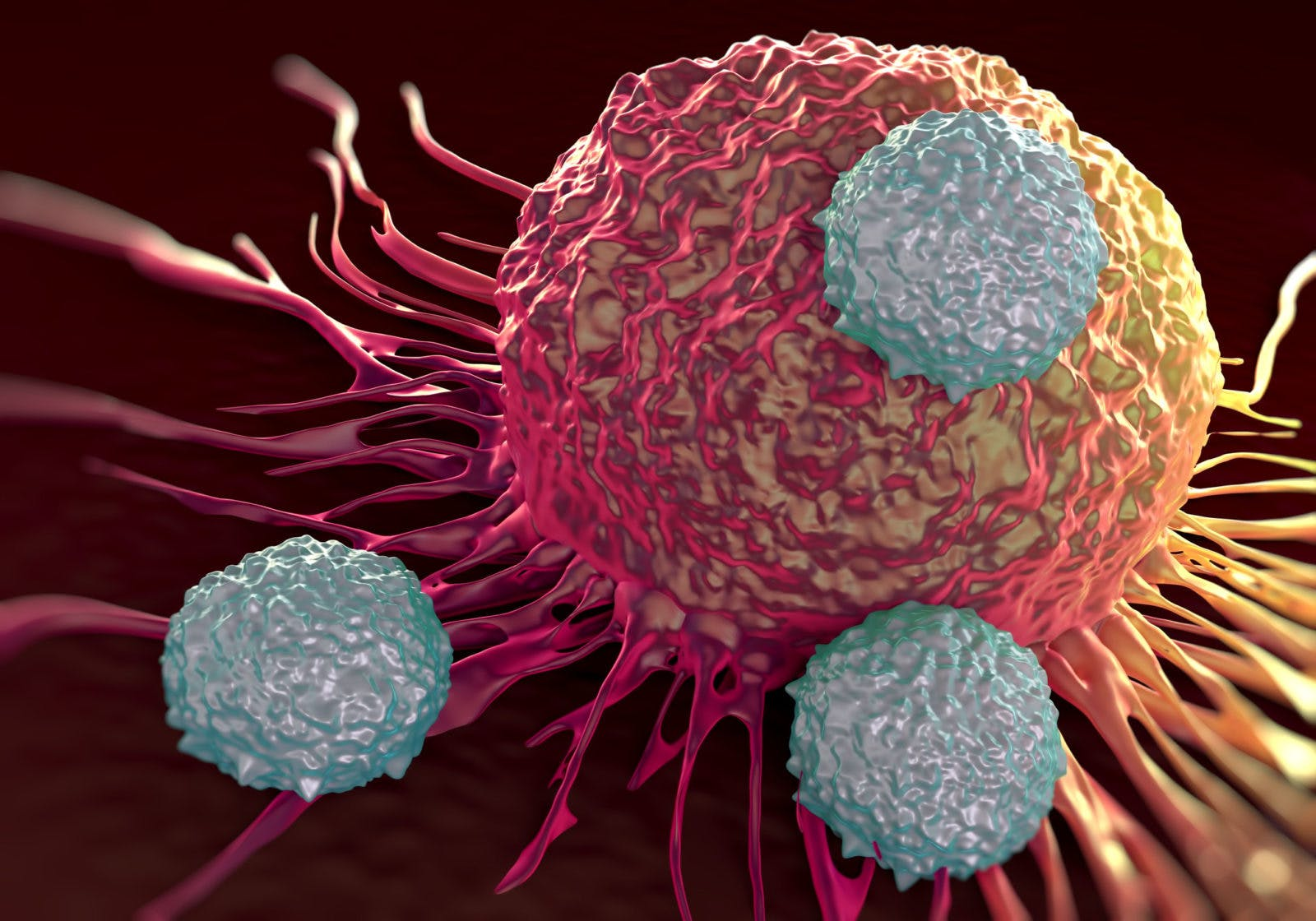 Misstaget att blanda ihop orsakerna till cancer