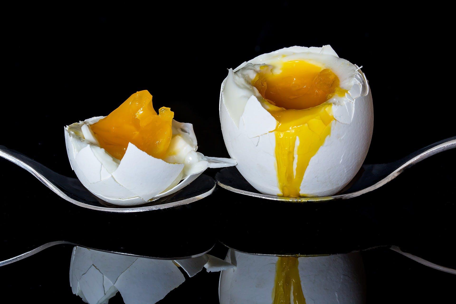 egg-2161877_1920