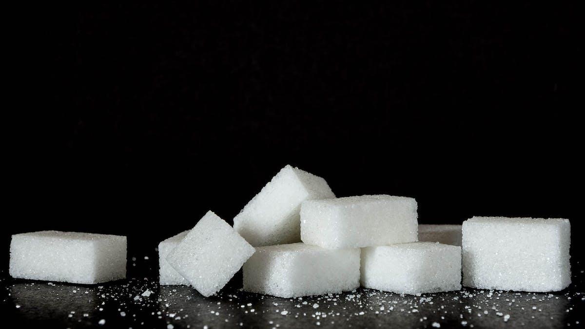 Nyhetsmorgon: Socker är inte farligt
