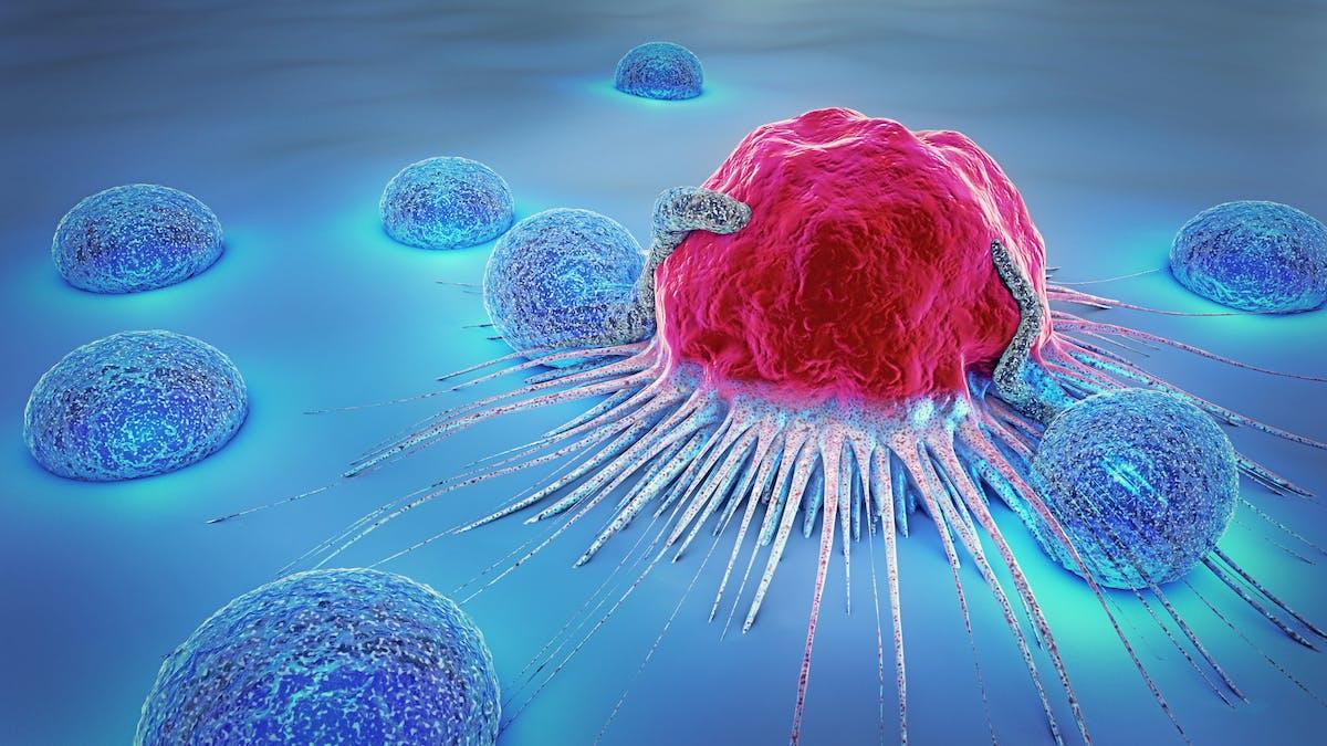 Sex gemensamma kännetecken för alla cancerformer