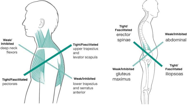 massera inflammerad muskel