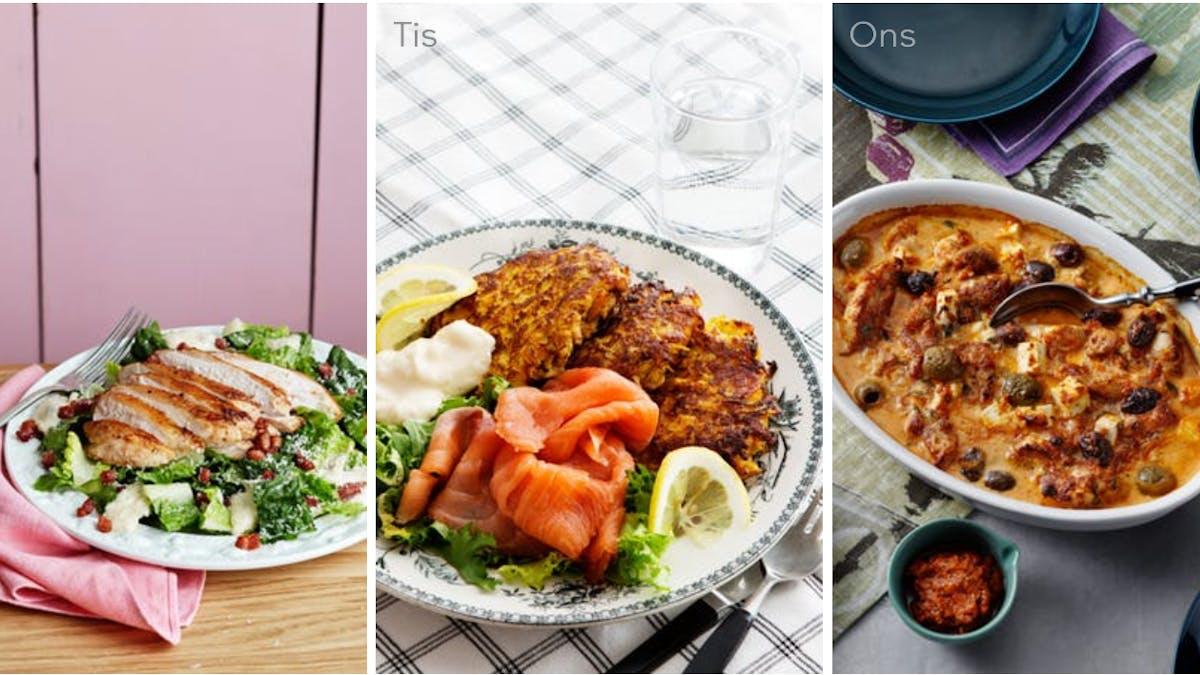 Fisk, fågel och vegetariskt