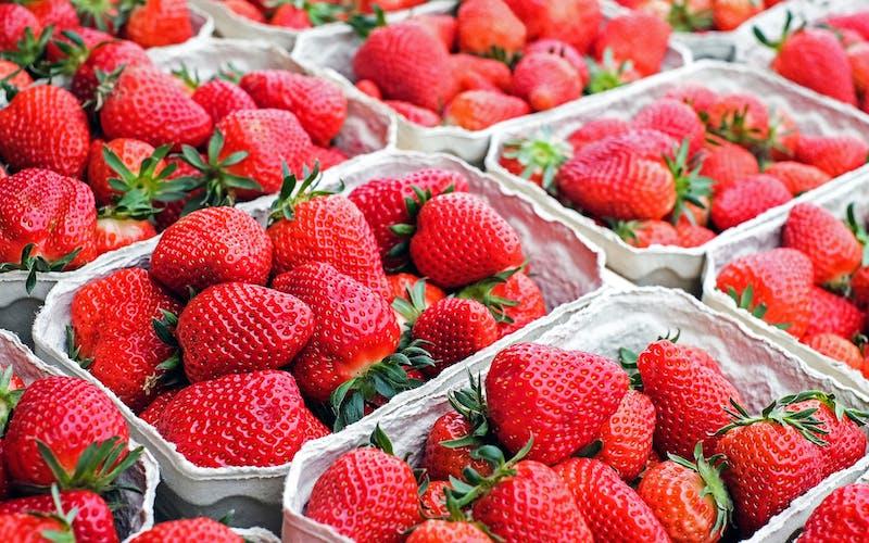 strawberries-1350482_1920