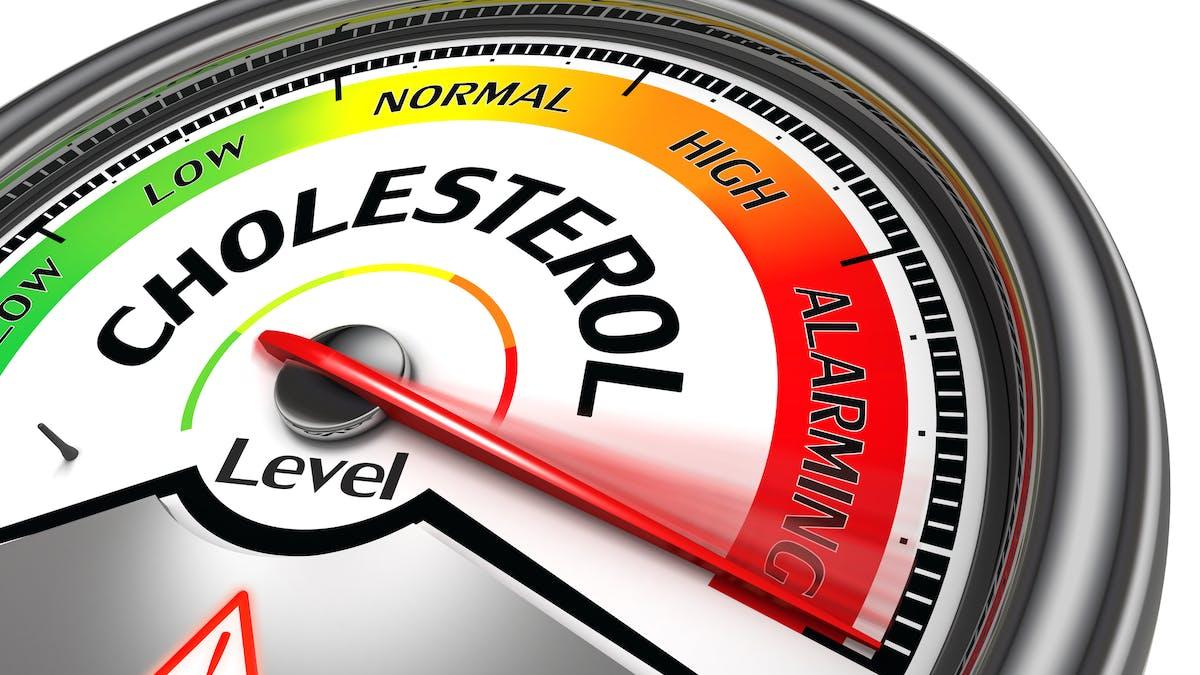 Högt LDL – vad gör jag?