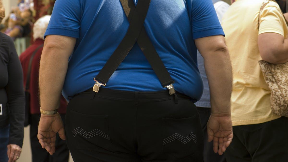 Biologin bakom övervikt