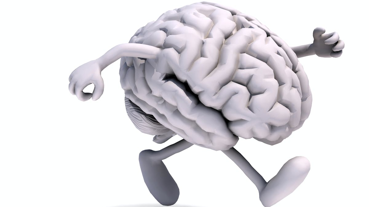 Att springa med hjärnan