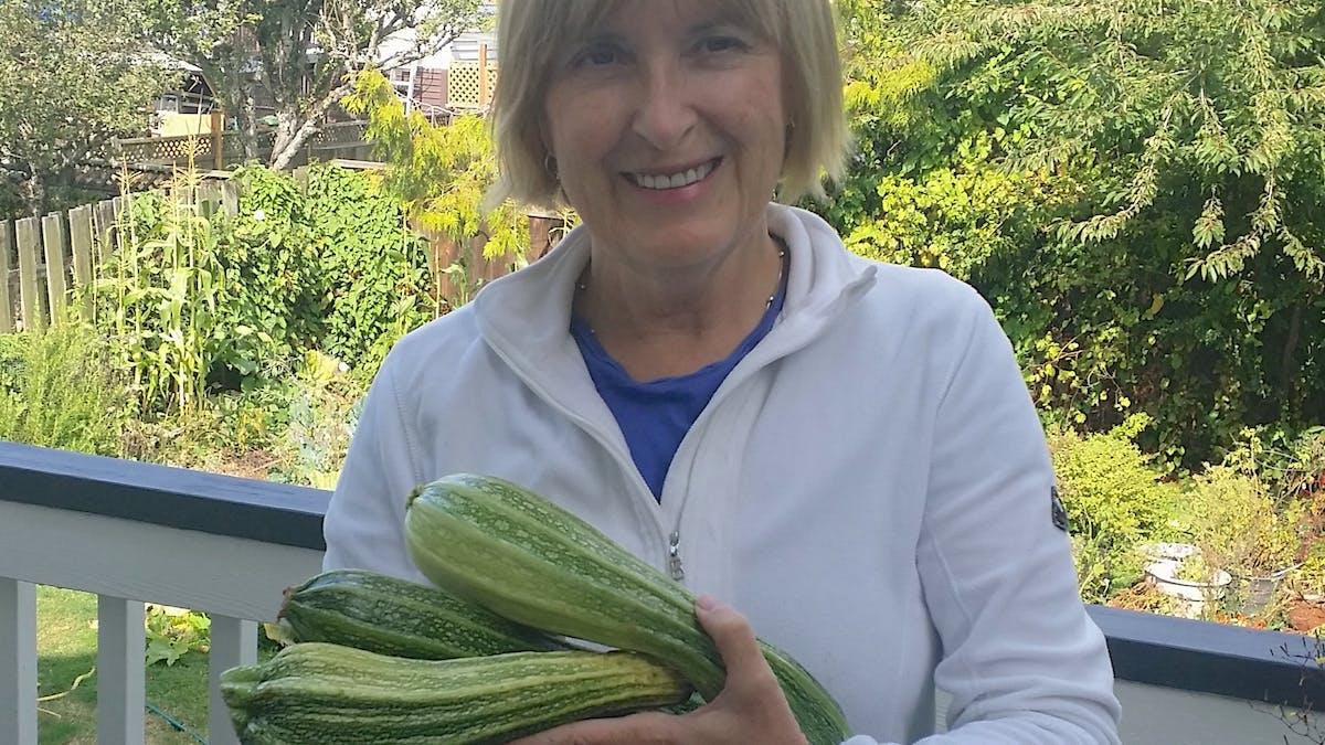 Zucchinifrossa – och tips på hur den kan användas