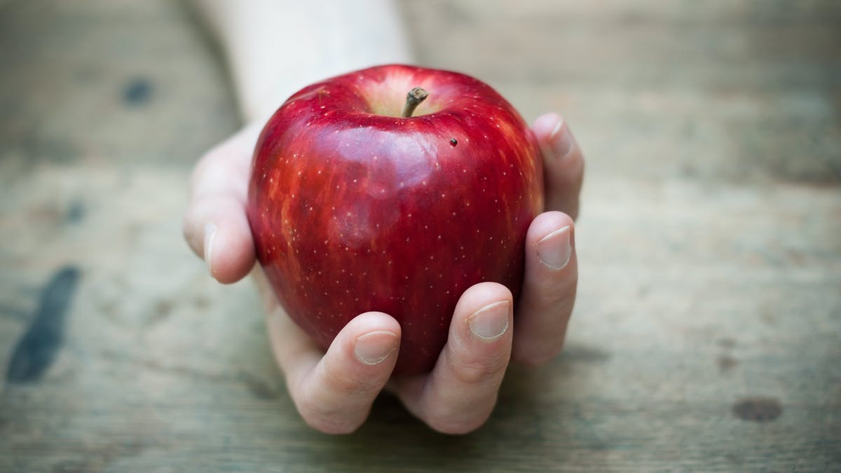 Matnjutning och kolhydratätning