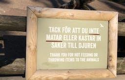 Brev till Kolmården: Varför vill ni att barnen ska äta glass, men inte schimpanserna?