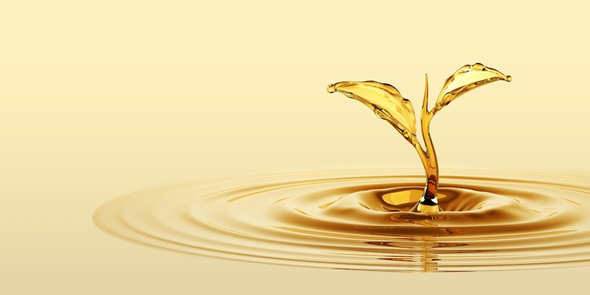 Vegetabiliska oljor: hälsosamma eller inte?