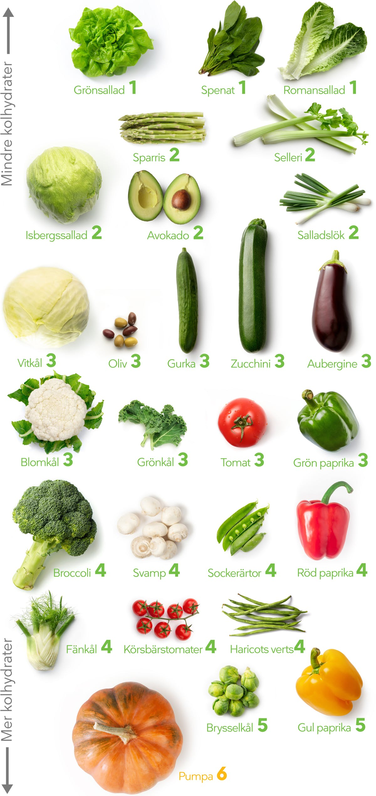 Visuella guider grönsaker LCHF