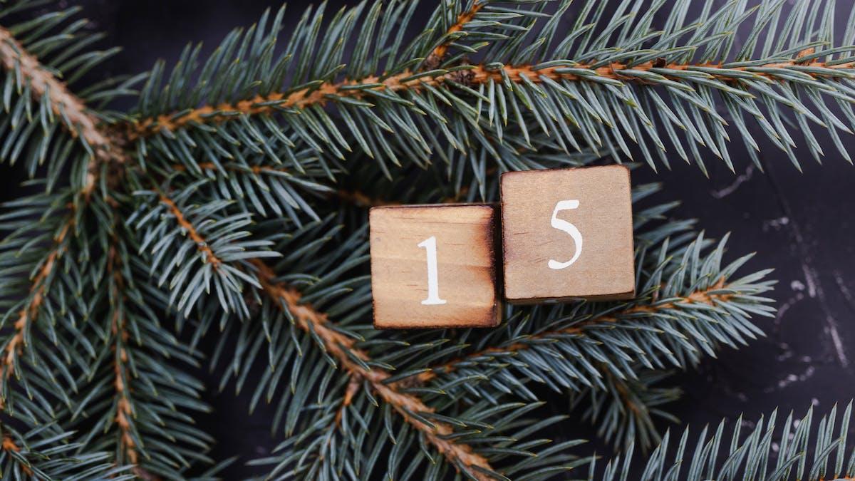 Lucka 15 - LCHF-smarta tips för ett riktigt gott julbord!