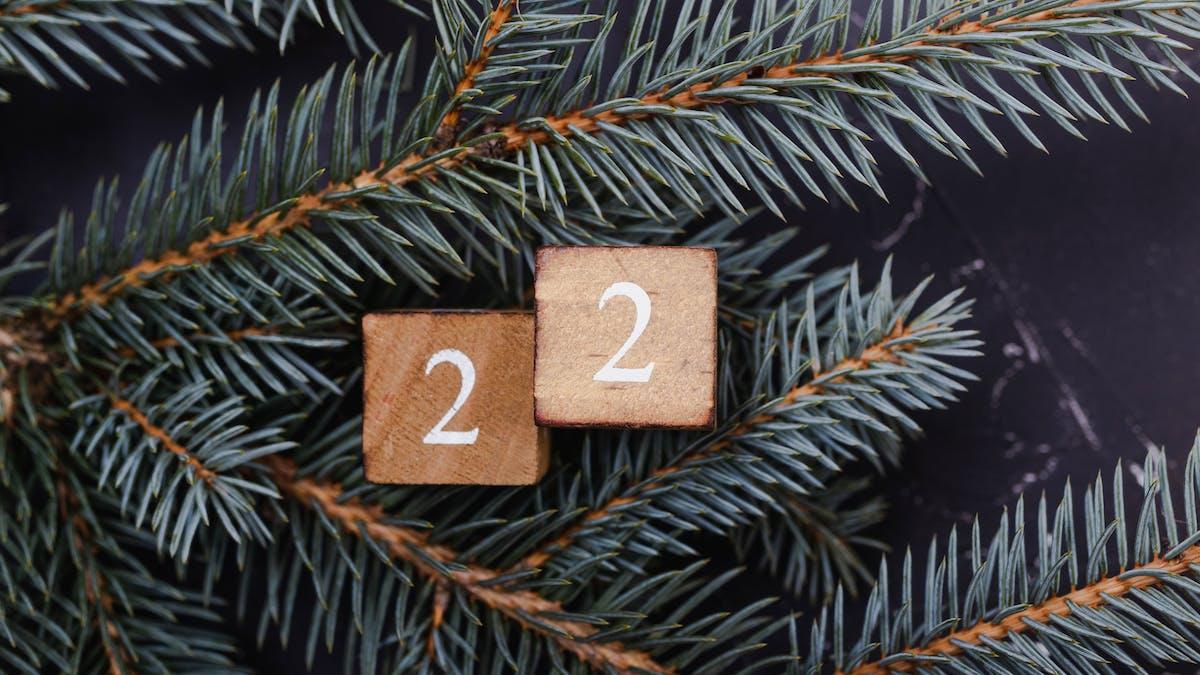 Lucka 22 - gör gott i jul: skänk en gåva till livräddande forskning