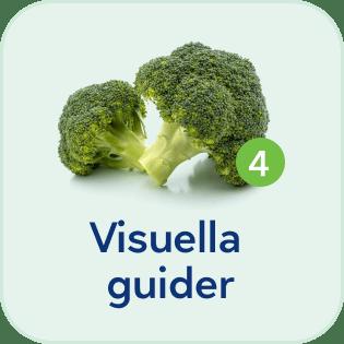 SE-visuella_guider-mobile