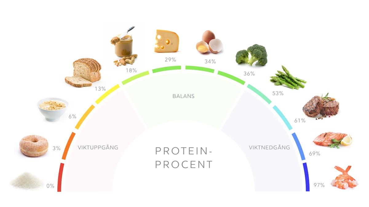 Proteinrik mat: vad det är och hur du gör