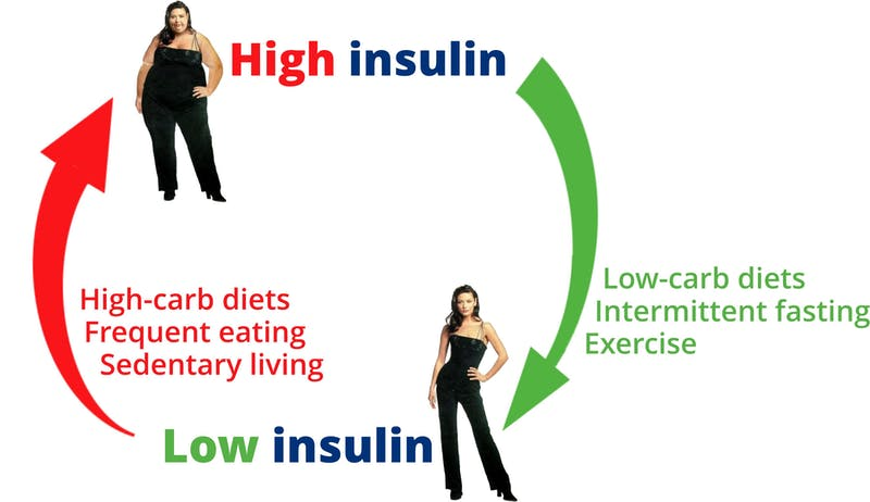 High-Low-Insulin