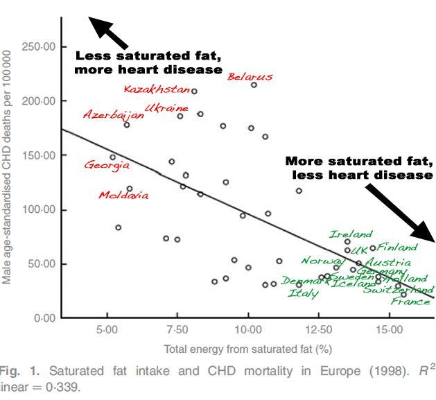 Saturated Fat and the Pan-European Paradox